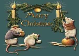 >Merry Christmas