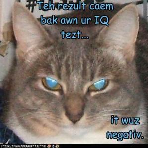 yez-im-pawsitiv