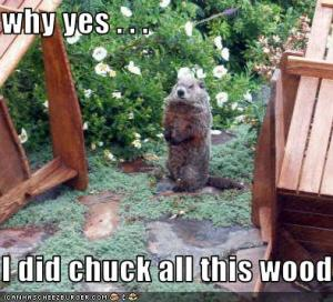 woodchuck-chucked-wood