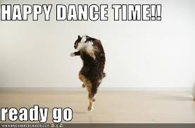 happy dance cat