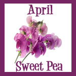 sweetpeaapril